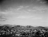 Ante el horizonte – Fundació Joan Miró
